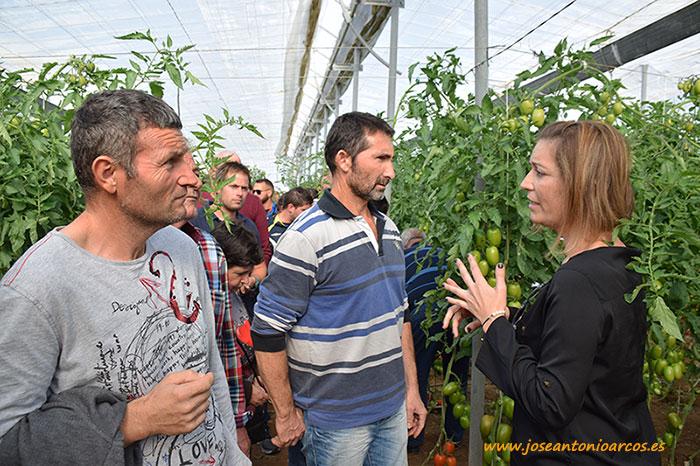 Jornada-de-tomate-Granoval-con-Meridiem-Seeds-4