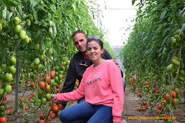 Jornada-de-tomate-Granoval-con-Meridiem-Seeds