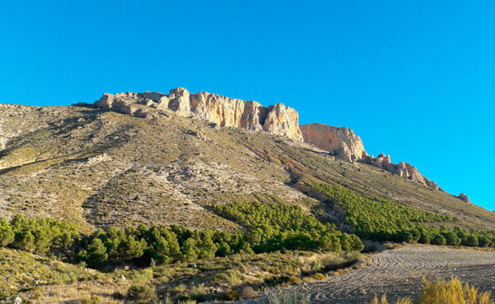 Restauración del paisaje de La Solana de La Muela (Los Vélez)