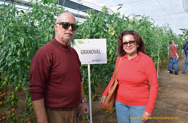 María-Berenguel-y-Emilio-Soler,productores-de-tomate-de-la-zona-de-Níjar