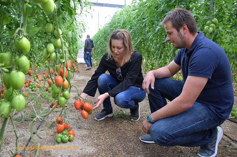 Marina-García,-técnico-de-Meridiem-Seeds-con-tomate-Granoval