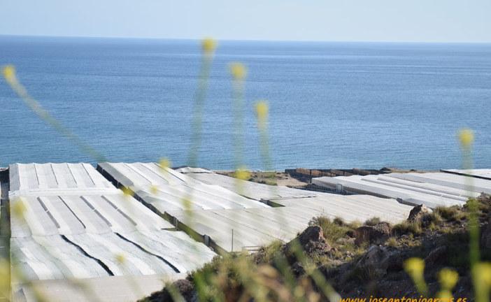Asaja Andalucía critica que se duplique el presupuesto de pesca y se congele el agrícola