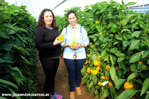 Rosario Rodríguez y Mónica Sánchez, agricultoras almerienses.
