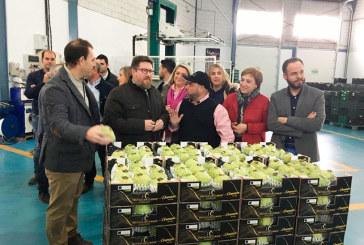Incentivos para las granadinas Hortícola Guadalfeo y Frutas Los Cursos