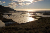 El invernadero solar, una estructura sostenible