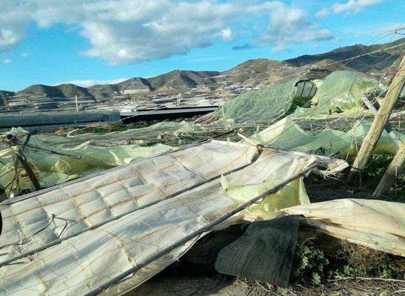La borrasca Bruno destruye invernaderos en la costa de Granada.