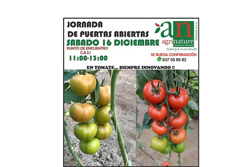 Día 16 de diciembre. Jornada de puertas abiertas de tomate de Agrinature