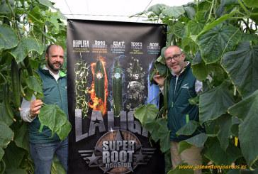 La Liga Fantástica de pepinos con poder en la raíz