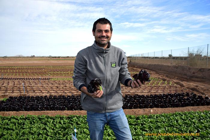 Manuel Blasco, breeder de Enza Zaden.