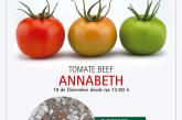 Día 19 de diciembre. Jornada de tomate de Zeraim
