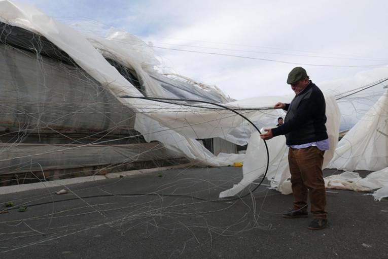 Agricultores del Poniente almeriense afectados por los tornados de enero de 2018. Asaja-Almería.