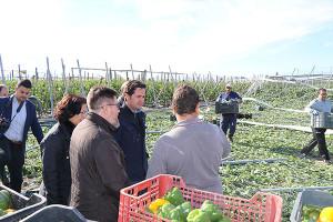 Invernaderos afectados por el tornado de El Ejido, Almería, el día de Reyes de 2018.