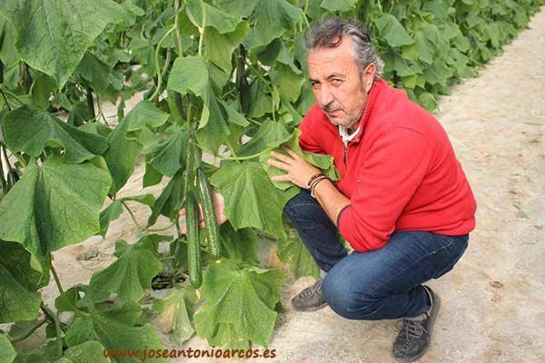 Andrés Maldonado, agricultor de EcoVega, costa de Granada.