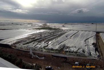 La Unión, Clause, Seminis, Cristalplant y Voloagri apoyarán a los afectados del tornado