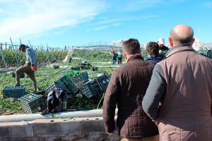 Visita de representantes de la Junta de Andalucía a la zona agrícola afectada por el tornado sufrido el 6 de enero de 2018 en invernaderos de El Ejido, Almería.