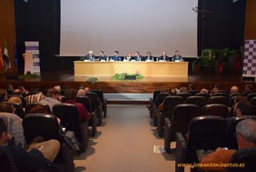 El olivar a debate en Don Benito