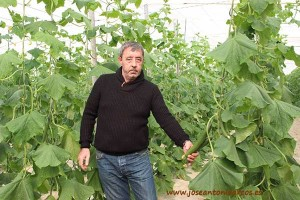 José Maldonado, agricultor de EcoVega, costa de Granada.