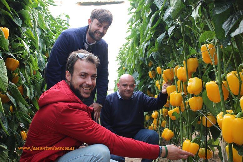 Manuel Pozo Pineda, de Alhóndiga La Unión; con José Sojo, agrónomo; y Miguel Ángel Fernández, desarrollo de melón y sandía de Fitó.