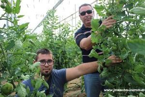 Agricultores del Poniente. Padre e hijo.