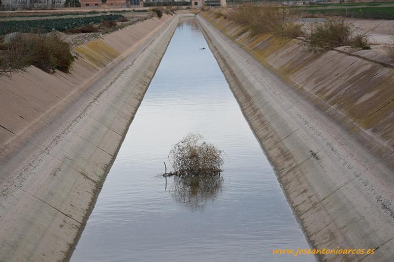 Trasvase Tajo-Segura a su paso por el campo de Cartagena, Murcia.