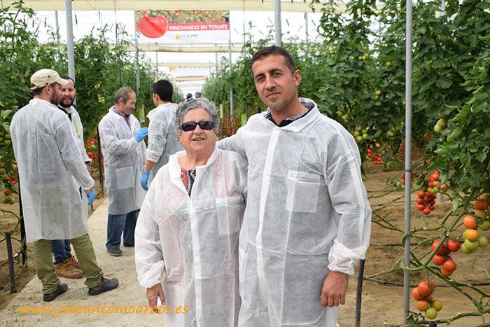 Jornadas de tomate de HM Clause