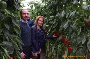 Antonio Moreno y Carmen Vázquez, agricultores de Rebeque