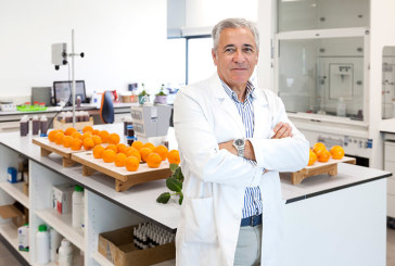 Citrosol lanza una nueva cera que reduce las mermas de cítricos en los envíos a mercados lejanos
