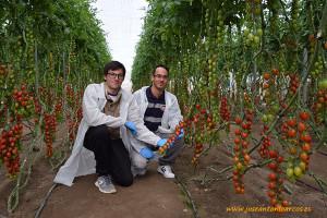 Diego y Pedro con cherry Dulcini
