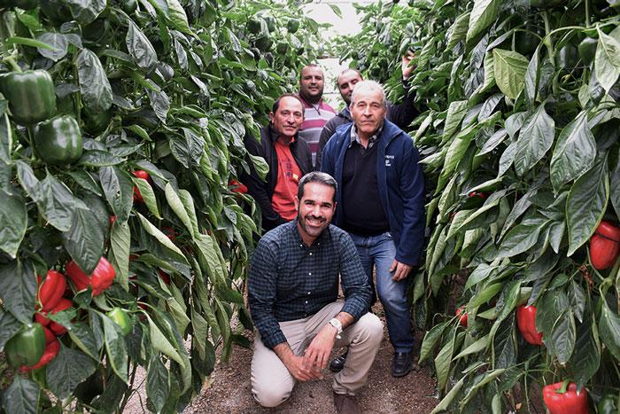 José Torres, técnico comercial de Syngenta con agricultores de Roquetas de Mar