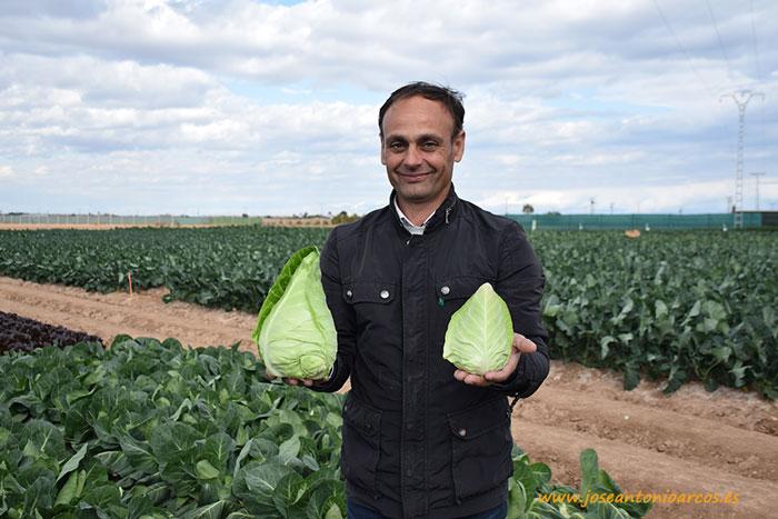 José Hernández con la col mini picuda Teama.