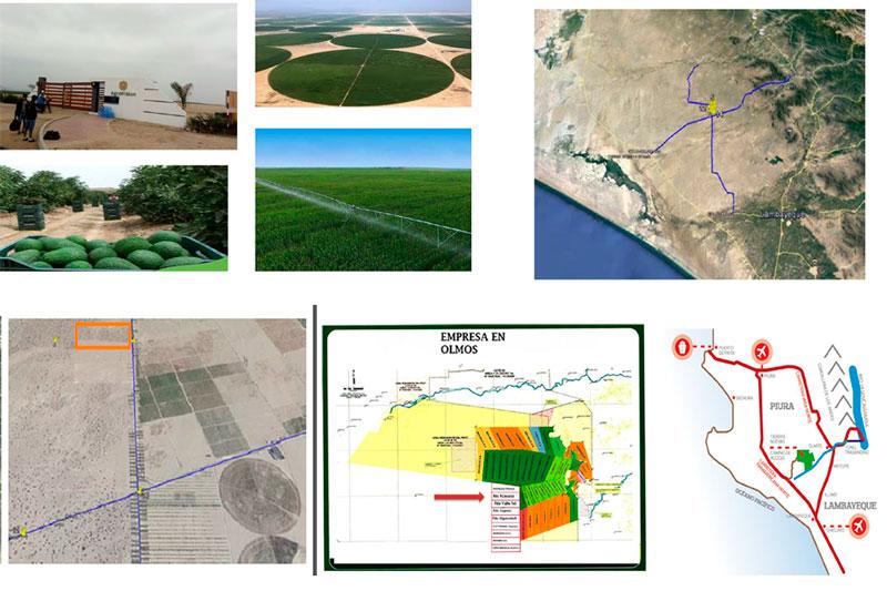 Se vende finca de 600 hectáreas en Perú apto para todo tipo de cultivos