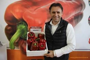 Zoran Susic, breeder de pimiento de Monsanto.