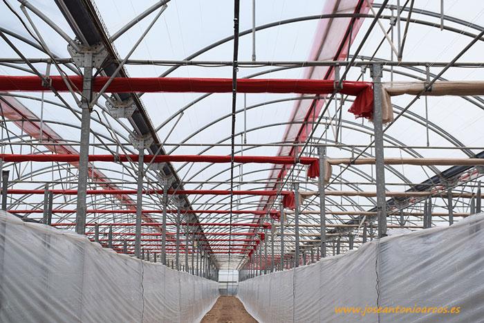 Malla roja y plateada de Pelemix en la finca de Mirafresh Organic.