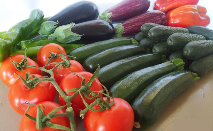 Ecoculture ensaya con Tecnova mejoras en la vida poscosecha de los frutos