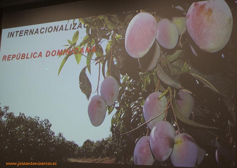 Biosabor amplía con papaya y mango de República Dominicana