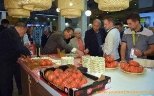 El tomate Monterosa de grupo Gavá y Fitó.