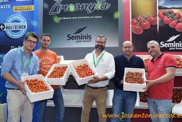 El cherry perfecto para Seminis: Zirconyta
