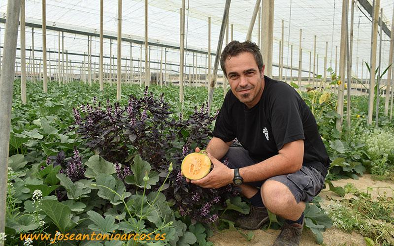 Paco Aguilera, productor orgánico.