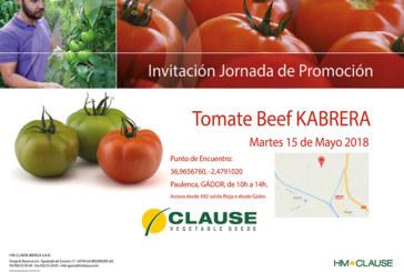 Día 15 de mayo. Jornada de promoción de tomate beef de Clause