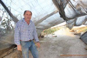 Juan Rivas agricultor afectado por el granizo del 1 de mayo en Almería.