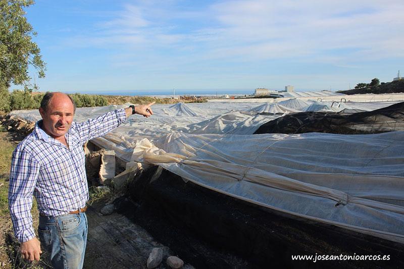 Juan Rivas señalando los carros cargados de cherry cubiertos por el plástico caído.
