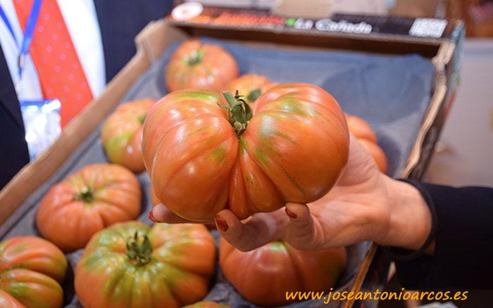 Tomate rosa asurcado de la IGP Tomate La Cañada.