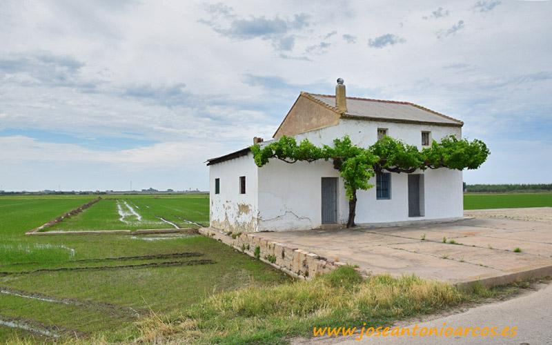 El Palmar, arrozales de Valencia.