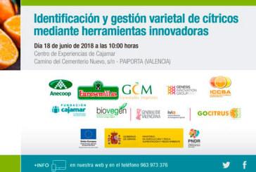 Día 18 de junio. Identificación y gestión varietal de cítricos