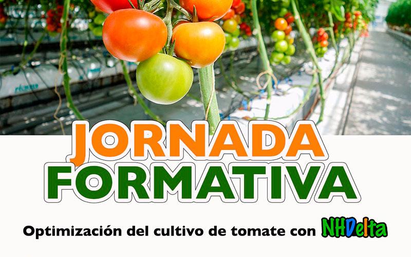 Día 19 de junio. Jornada formativa sobre cultivo de tomate con Ecoculture
