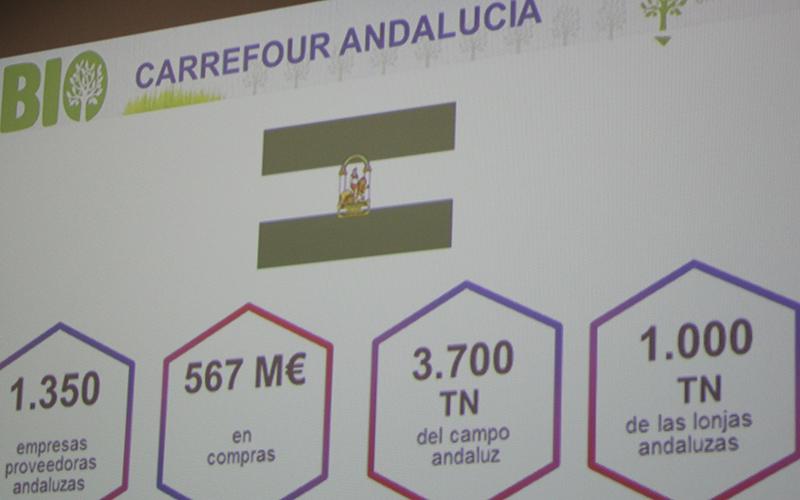Carrefour abre su primera tienda