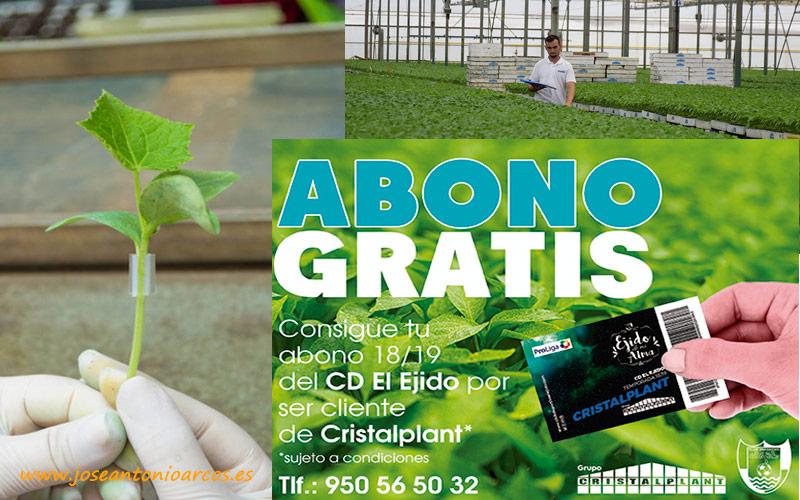 Cristalplant lanza una guía de cultivo para pepino injertado