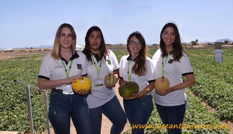 Melones para saborear. El concepto Chaloupe de Enza Zaden