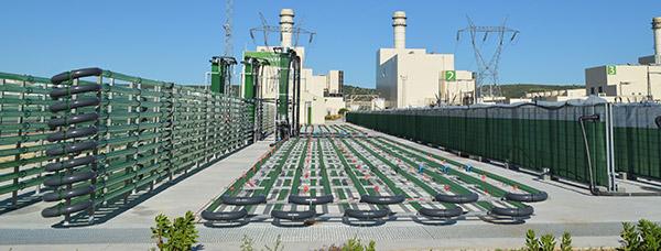Vista general de la planta de AlgaEnergy en Arcos de la Frontera (Cádiz).
