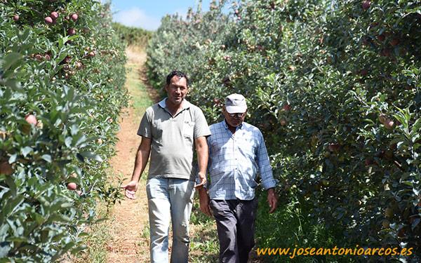 Productores de manzana en Portugal.